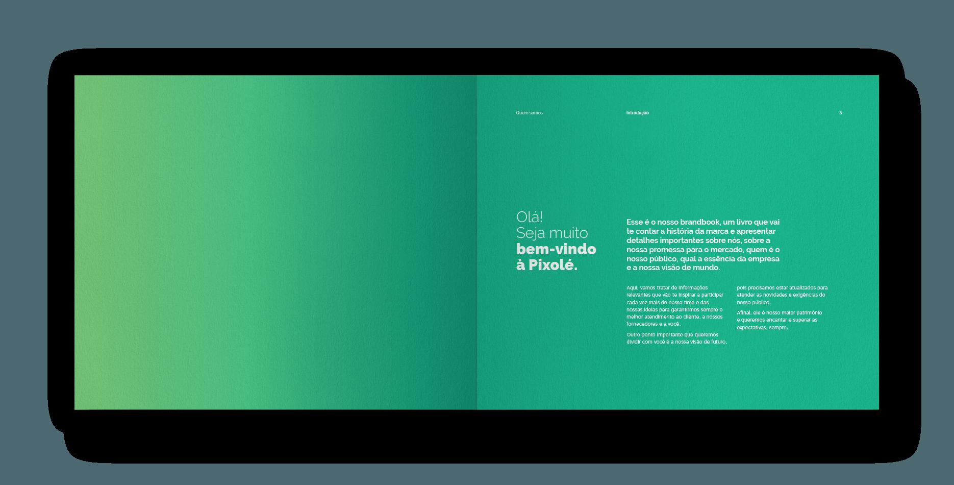 02-pixole-strategy-brandbook